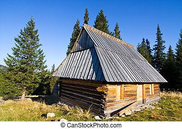 Shepherd wooden hut on meadow in autumn season, Tatry...