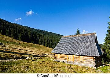 Shepherd wooden hut on meadow in autumn season, Tatry...