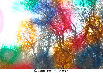 liquid light forest - Tree branches though colorful painted...
