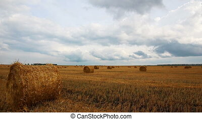 landscape with harvested bales of straw in field - timelapse