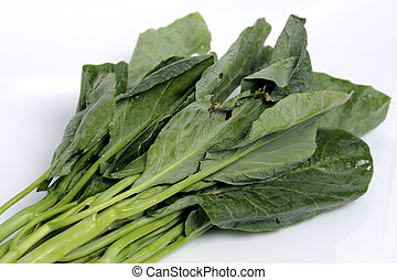 Fresh kale on the white background.