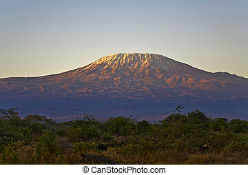Kilimanjaro Morning - An image of Kilimanjaro in the morning...