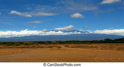 Kilimanjaro Blue - An image of Kilimanjaro with a snow cap.