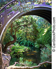 Japanese Tea Garden Pond and Bridge - Japanese Tea Garden in...