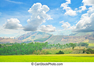 Mountain at the blue sky.