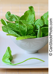 spinach - bowl of fresh spinach