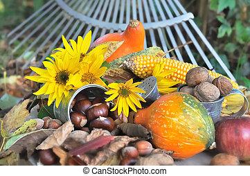 säsongbetonad, frukt, utvald, Trädgård
