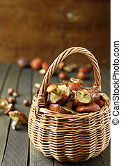 fresh mushrooms gathered in the forest in a basket, food...