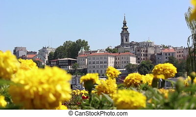 Belgrade, church, flowers
