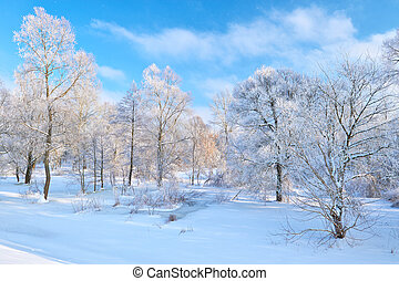 Beautiful snowy landscape by the Narew river valley. - Snowy...