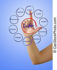 diagrama, vida