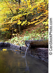 water spring with wooden channel in autumn forest