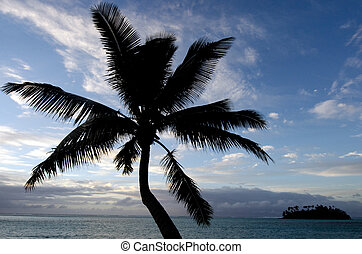 Muri Lagoon in Rarotonga Cook Islands - Silhouette of a...