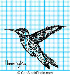 hummingbird sketch on graph paper - image of hummingbird...