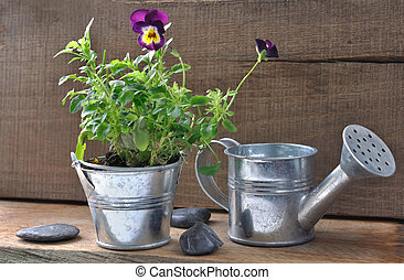 mini set of rustic garden - mini Set composed of watering...