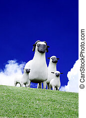 Sheep family