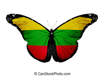 Lithuanian flag butterfly, isolated on white background