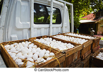 Eggs - White chicken eggs in wooden box - selective focus
