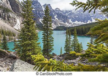 Moraine, lago, Banff, nacional, parque, Alberta,...