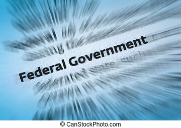 Federal Government - A federation is a political entity...
