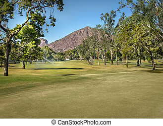 Beautiful golf course - Golf course in Arizona, with...
