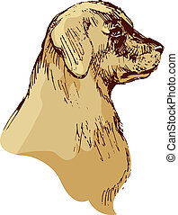 Dog head - bloodhound hand drawn illustration - sketch in...