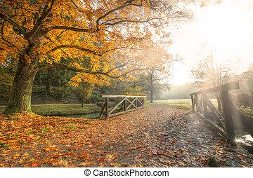 Autumn landscape - Rural autumn park view in beautiful color...
