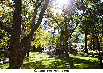 NYC Central Park - The famous rocks of Central Park in New...