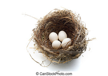 nest and eggs - birds nest with four eggs isolated on white...