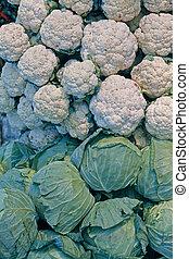 col, Brassica, oleracea, Var, Capitata, coliflor, Brassica,...