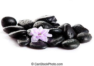 Spa Stone. Zen pebbles. Stone spa and healthcare - Spa...