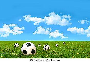 Soccer balls  in a field of tall grass with blue sky