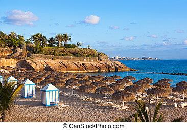 playa, Las, Américas, Tenerife, isla, -, canario