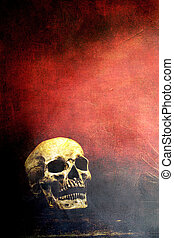 Skull with copy space - Textured old human skull with room...