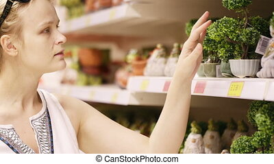 Attractive woman choosing potted plants - Attractive young...