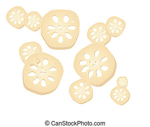 lotus root - an illustration of sections of lotus root...