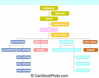 Corporation: organizational structure - Corporations can...
