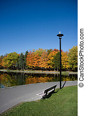 Unoccupied bench in a park on an autumn d
