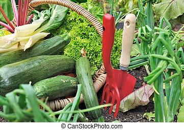 red tools in vegetable garden