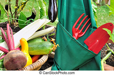 harvest of vegetables - gardening tools in an apron near a...