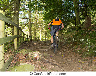Mountain biker riding trails in Wales - Mountain biker...
