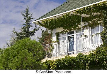 facade of a building in the vegetation