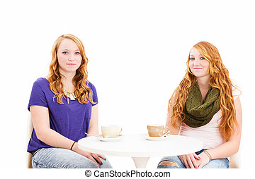 charming young redhead women sitting at a coffee table on...