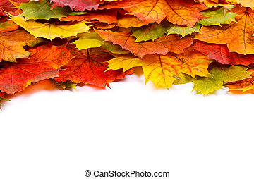 Colorful leaf border - Colorful autumn leaves border with...