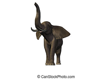 ELEPHANT 2 - Beautiful pachyderm male with enormous tusks.
