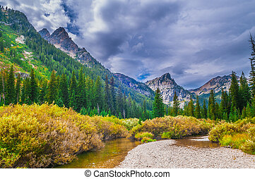 Beautiful Autumn near Cascade Creek - Grand Teton National...
