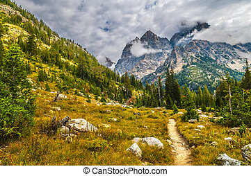 randonnée, piste, Parc, national, -, cascade, canyon,...