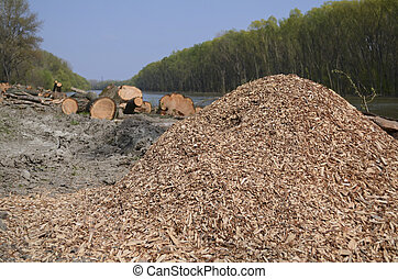 A Heap of Wood Chips