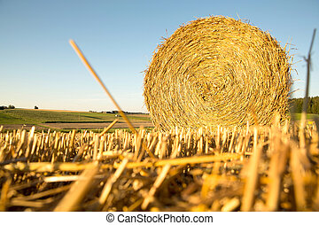 Hay bale on a harvested field in Germany
