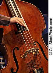 double bass - musician playing double bass with your...